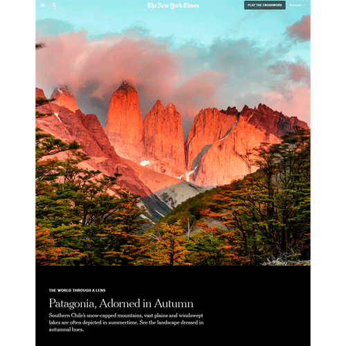 New-York-Times-Patagonia-WTAL