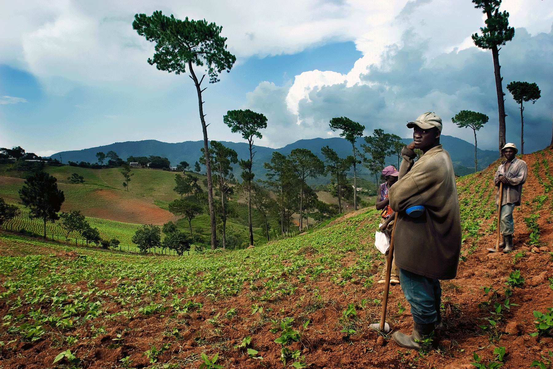 constanza-dominican-republic-farmland-mountianside