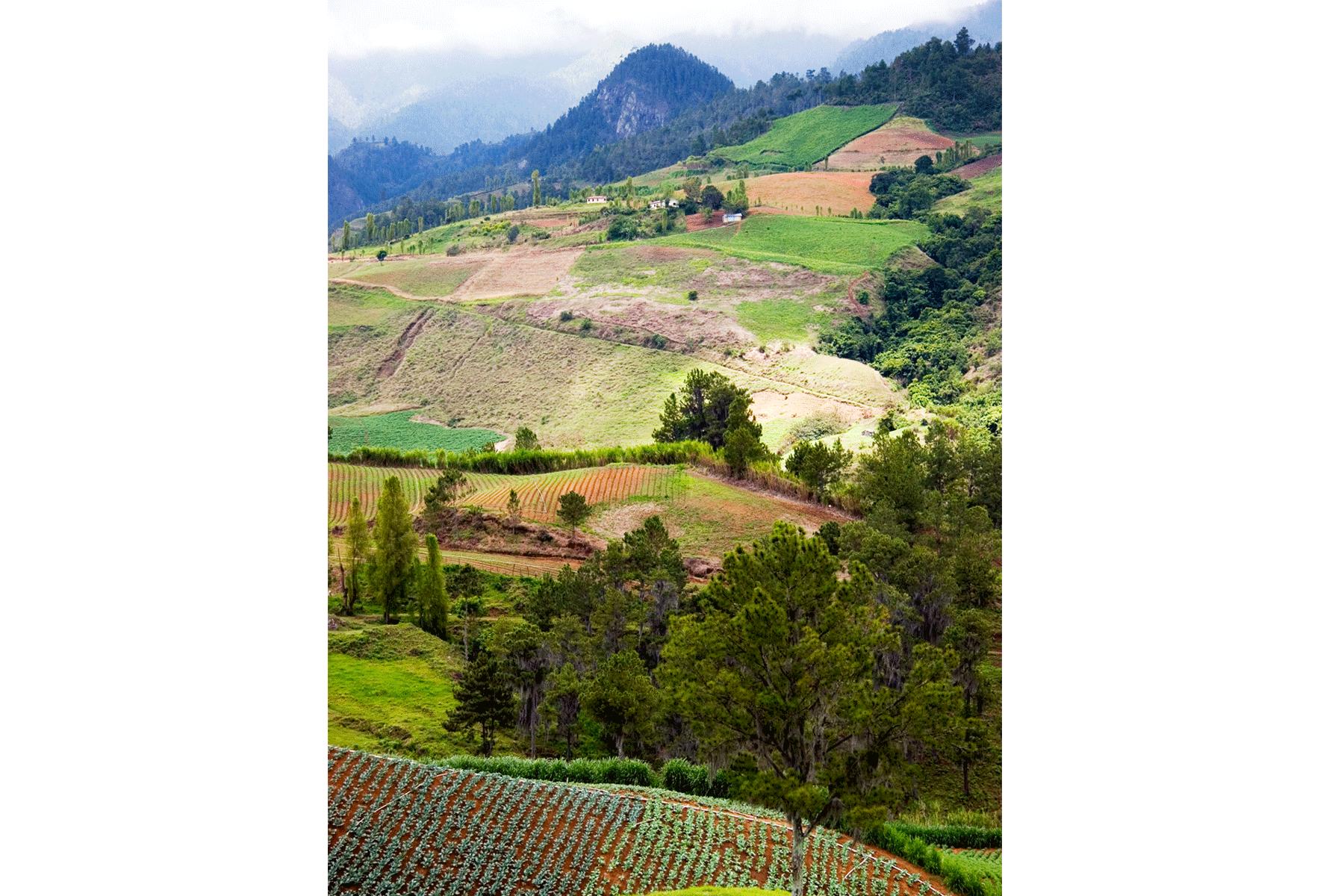 constanza-jarabacoa-farm-dominican-republic-mountains