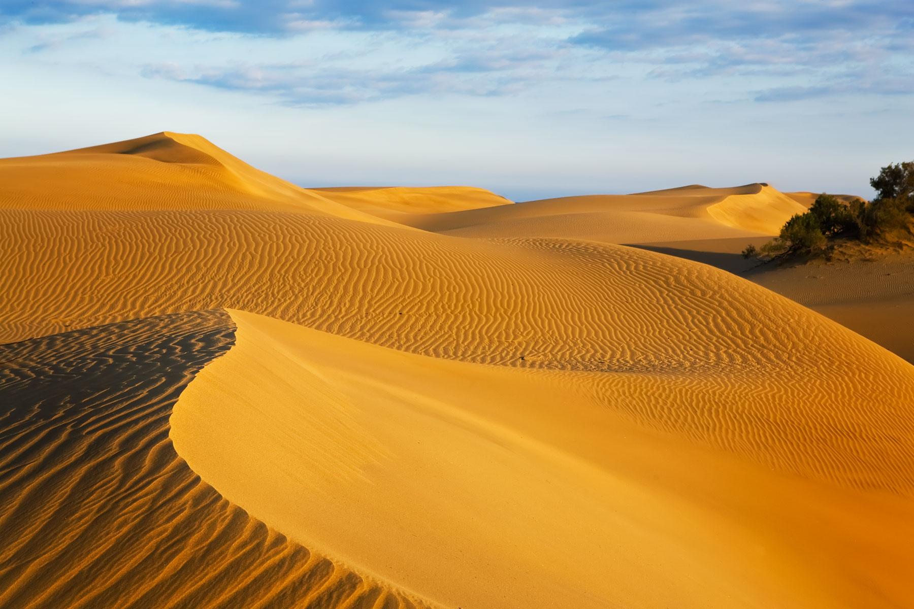 mesapaloma-sand-dunes-canary-silands-spain